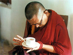 Advice from Rinpoche Aug 2009 - Eating